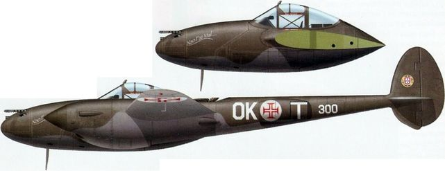 P 38f esquadrilha ok